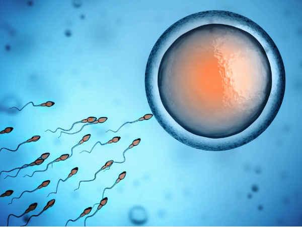 Những việc nam giới cần làm ngay để cải thiện tinh trùng