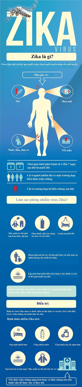 Làm gì khi bị nhiễm virus 'ăn não' do muỗi truyền