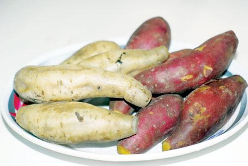 bai-thuoc-tri-tieu-duong-bang-khoai-lang