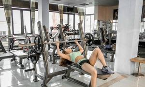 Người đẹp phòng gym tập cho 3 vòng cân đối