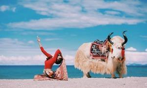 Cô gái Việt tập yoga ở độ cao gần 5.000 m xứ Tây Tạng