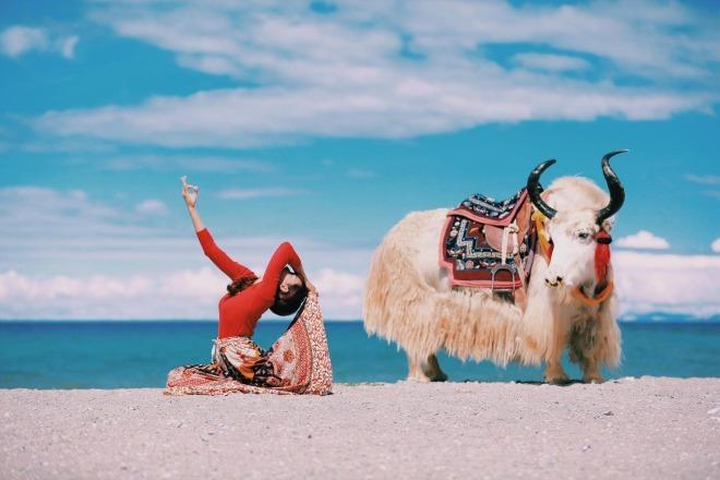 """<p class=""""Normal""""> Phụng Yến tập yoga bên bò Yak ở Thánh hồ Namtso, Tây Tạng trên độ cao hơn 4.700 m. Gắn bó với yoga từ 2 năm nay, trung bình mỗi tuần chị Yến dành 3 buổi để tập yoga, hôm nào bận không tập là cảm giác thấy thiếu vắng. Chị dành đam mê cho du lịch và yoga. Nữ MC cho biết giữa hai sở thích này có một điểm chung là giúp nhận ra mọi giới hạn đều được nới rộng ra vô cực.<span>Trong những chuyến đi đến các vùng đất tươi đẹp, nữ MC luôn dành thời gian lưu lại bài tập, tư thế yoga đẹp mắt.</span></p>"""