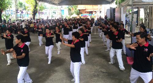 Hàng trăm người tham gia đồng diễn tại ngày hội Hành động sớm vì trái tim khỏe. Ảnh: Lê Phương.