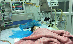 Bé 8 tháng tuổi nguy kịch vì bị điều dưỡng tiêm nhầm kali