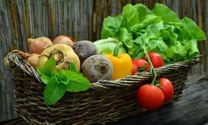 Chế độ ăn ngày Tết với người bệnh đái tháo đường