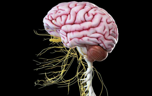 8 dấu hiệu bạn bị tổn hại thần kinh