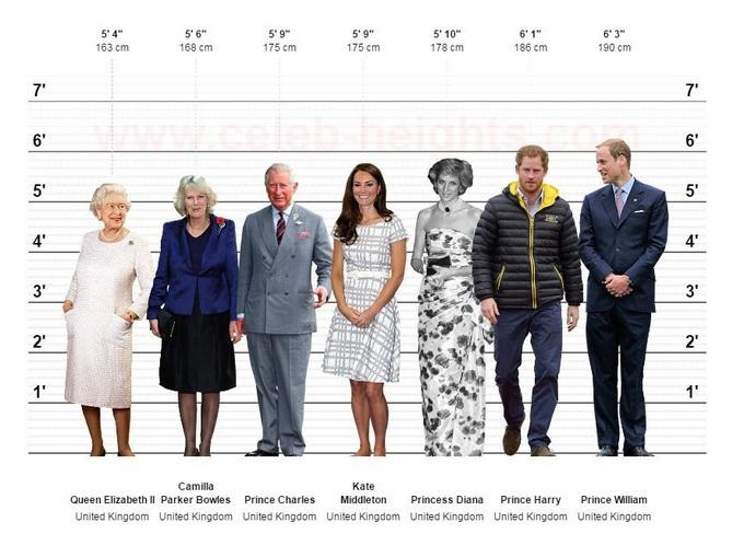<p> Bảng so sánh chiều cao của các thành viên Hoàng gia Anh.</p>