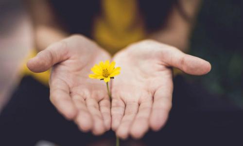 8 cách tự chữa trầm cảm không cần thuốc