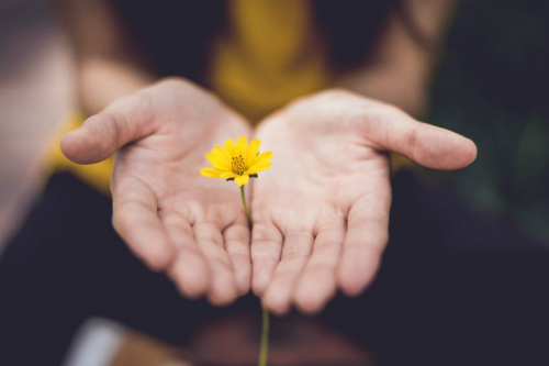 Bệnh nhân trầm cảm có thể tự giúp đỡ bản thân nếu chịu thay đổi lối sống. Ảnh:Bridges to Recovery.