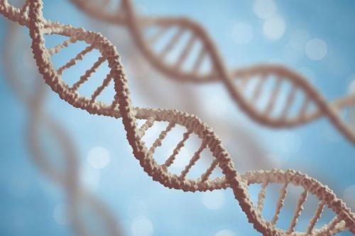 Xét nghiệm tầm soát 20.000 gen giúp cung cấp thông tin quan trọng về các đột biến di truyền làm tăng nguy cơ mắc ung thư.
