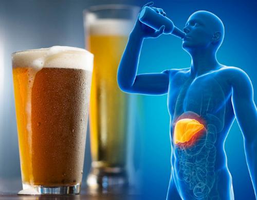 Gan mất nhiều giờ để xử lý rượu khi vào cơ thể.Ảnh: Daily Express