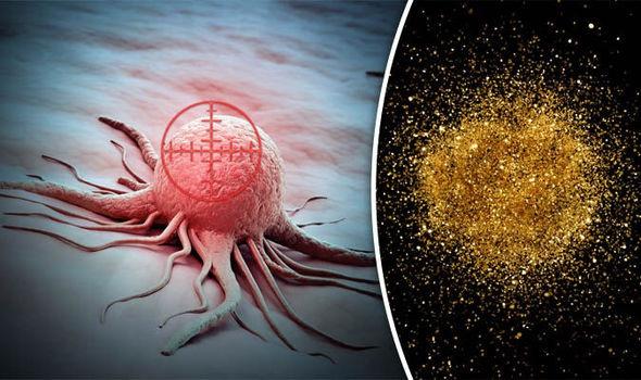Các hạt nano vàng được gắn thể đặc hiệu để tìm và tiêu diệt tế bào ung thư đang là hướng nghiên cứu tiềm năng trong điều trị bệnh ung thư, tuy nhiên mới chỉ dừng lại ở nghiên cứu trên động vật. Ảnh: L.D.