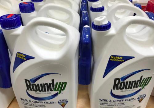 Thuốc diệt cỏ Roundup bị cho là gây ung thư. Ảnh: Reuters.