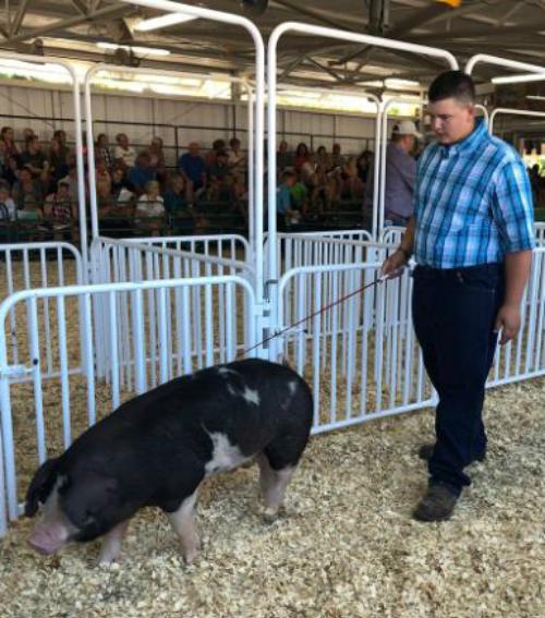 Waylon bên chú lợn Roo. Ảnh: CNN.
