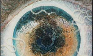 Ký sinh trùng trong mắt 'chỉ đạo' họa sĩ vẽ tranh