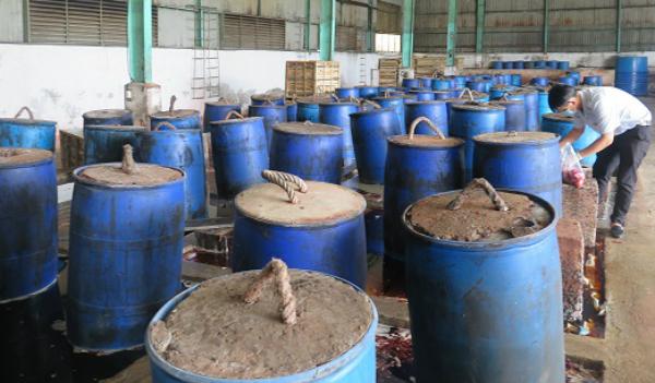 Các thùng phi nén ớt muối. Ảnh: Ban Quản lý An toàn thực phẩm TP HCM.