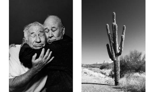 Bức ảnh khiến người xemliên tưởng đến sự tương đồng giữa đầu hai người đàn ông với cây xương rồng và ở mức độ sâu hơn là tình bạn gần gũi thân thiết. Ảnh: CNN.