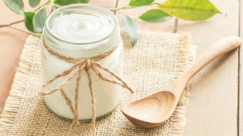 Thực phẩm chứa probiotic vô dụng với sức khỏe - ảnh 1