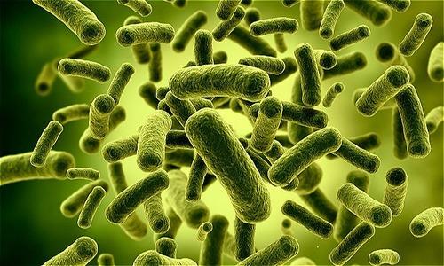 Bổ sung lợi khuẩn cho hệ tiêu hóa trẻ khỏe mạnh