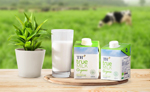 Sữa tươi A2 giảm chứng rối loạn tiêu hóa - 3