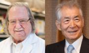 Nhà khoa học đạt giải Nobel: 'Thế giới không bao giờ thoát khỏi ung thư'