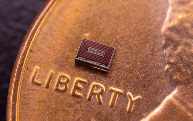 Con chip có kích thước nhỏ dùngđể tiêm dưới da. Ảnh: NA