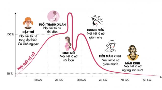 Biểu đồ nội tiết tố estrogen của phụ nữ.