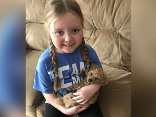 Bé Emma 7 tuổi được chẩn đoán u não. Ảnh: Geoff Mertens.