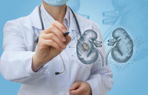 Các xét nghiệm máu, nước tiểu, siêu âm hoặc chụp X-quang, chụp CT giúp chẩn đoán sỏi thận.