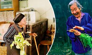 Vì sao người dân trên đảo Okinawa sống thọ