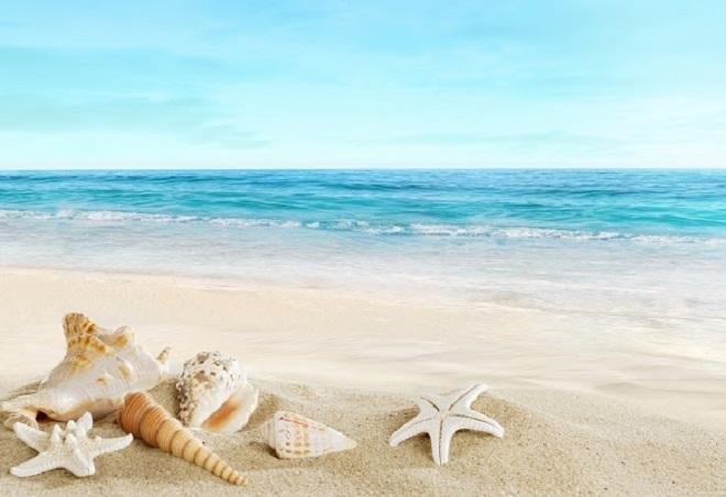 Vi khuẩn trong cát biển cso thể gây ngứa, dị ứng, rối loạn tiêu hóa. Ảnh: Chorme