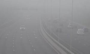 Bệnh có thể gặp do tác hại của bụi siêu mịn PM2.5