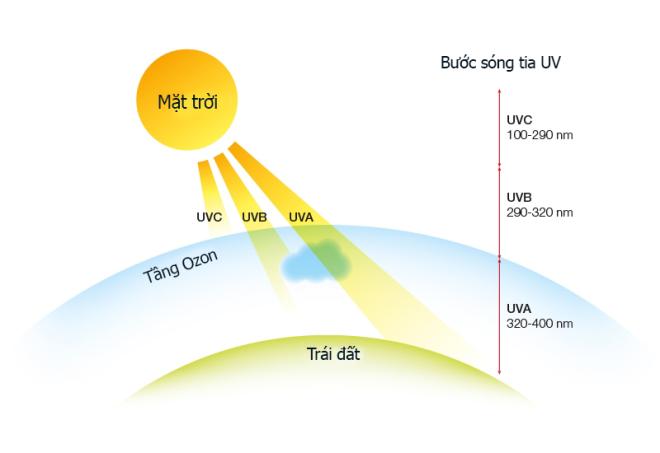 Minh họa về các tia UV tiếp xúc với bề mặt Trái Đất.