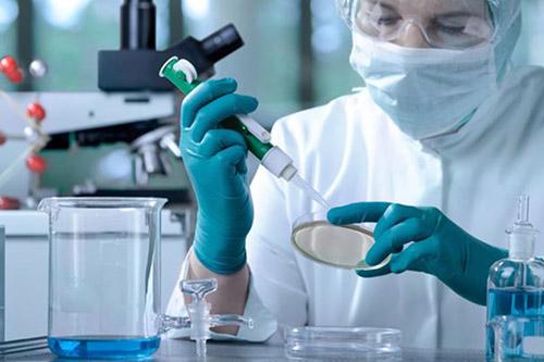 Tế bào NK một dạng lymphocyte (bạch cầu) giúp bảo vệ cơ thể khỏi bệnh tật.