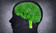 Bông cải xanh phòng bệnh tâm thần