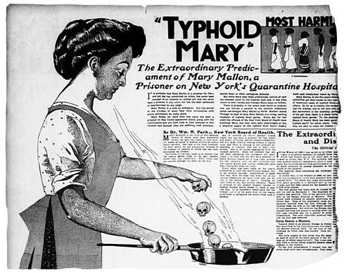 Minh họa Typhoid Mary. Ảnh: History.