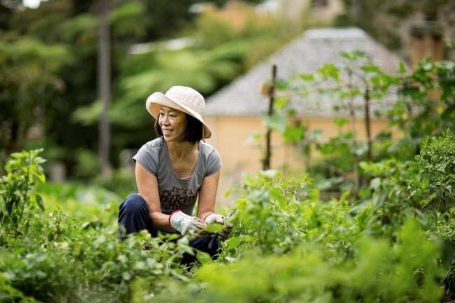 Làm vườn giúp bạn khỏe mạnh. Ảnh: Good House Keeping.