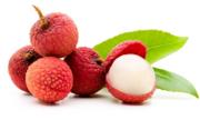 Tại sao ăn trái vải nhiều dễ nóng trong người?