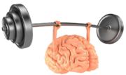 Tập thể dục có thể giúp não thông minh hơn