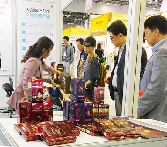 Viên bổ huyết Siberia được trưng bày tại triển lãm Y Dược tổ chức tại Hàn Quốc