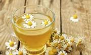 Tác dụng an thần của trà hoa cúc