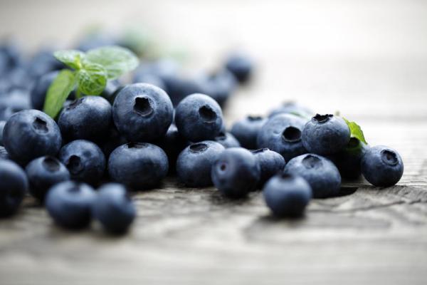 Hai tinh chất quý Anthocyanin, Pterostilbene có trong Blueberry được chứng minh tác dụng chống gốc tự do, tăng cường hoạt động não, nhờ đó lấy lại giấc ngủ ngon, ngừa trầm cảm
