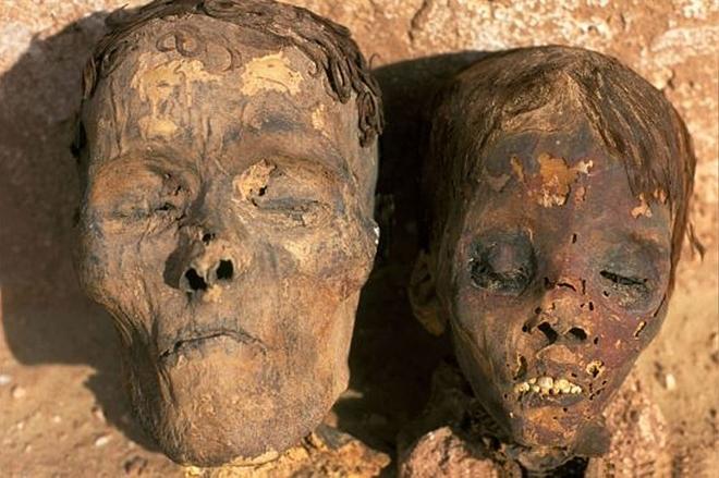 Một trong những xác ướp cung cấp các mẫu động mạch đến từ Dakhla Oasis ở Ai Cập. Ảnh: Foxnews