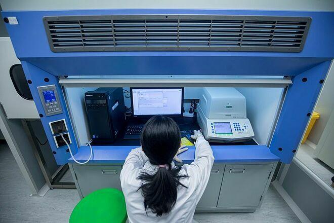Chuyên gia tạiGene Discovery phân tích kết quả xét nghiệm DNA của trẻ. Ảnh: Bloomberg