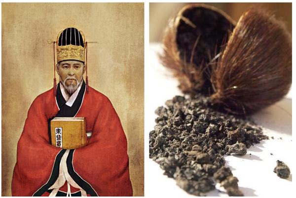 Xa xưa, Thần y Hurjun sử dụng xạ hương để điều trị cho bệnh nhân tai biến