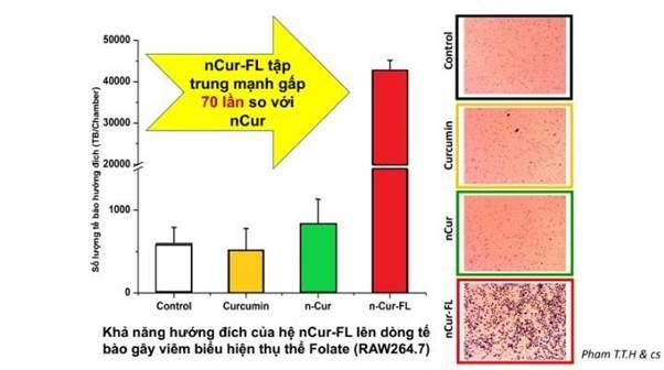 Viên sủi ScurmaFizzy có khả năng hướng đích lên tế bào gây viêm gấp 70 lần so với nano curcumin thông thường. Kết quả trong báo cáo đánh giá tính hướng của nguyên liệu sản phẩm ScurmaFizzy, Tiến sĩ Phạm Thị Thu Hường, Phòng Thí nghiệm trọng điểm Công nghệ enzym và protein,