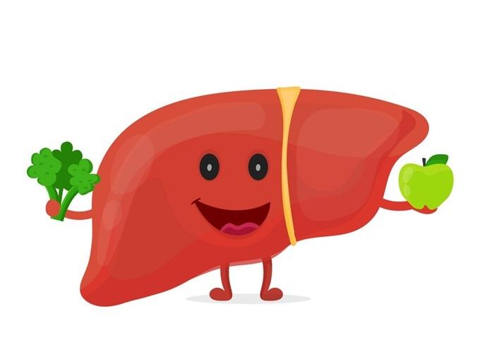 Bảo vệ gan giúp cơ thể tăng cường khả năng chống oxy hóa từ bên trong.