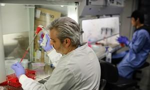 Tìm vaccine corona trong 3 giờ