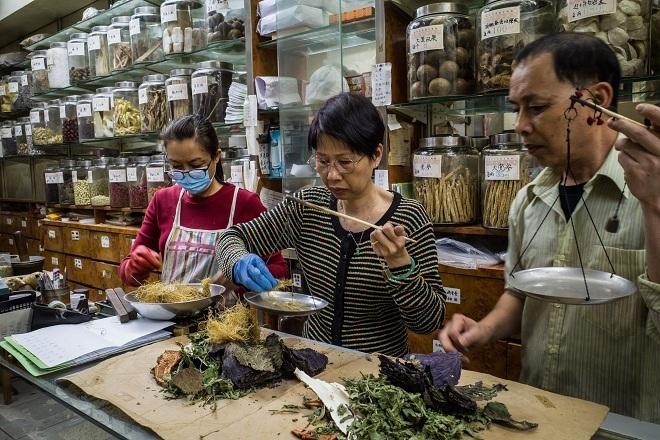 Chủ hàng cân dược liệu Trung y trong một hiệu thuốc ở Hong Kong. Ảnh: NY Times