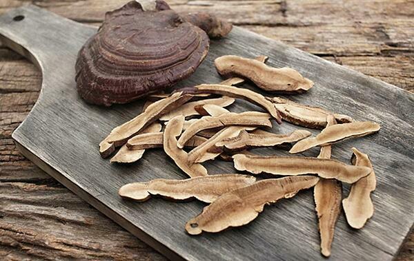 Thái lát nấm linh chi để đun nấu.